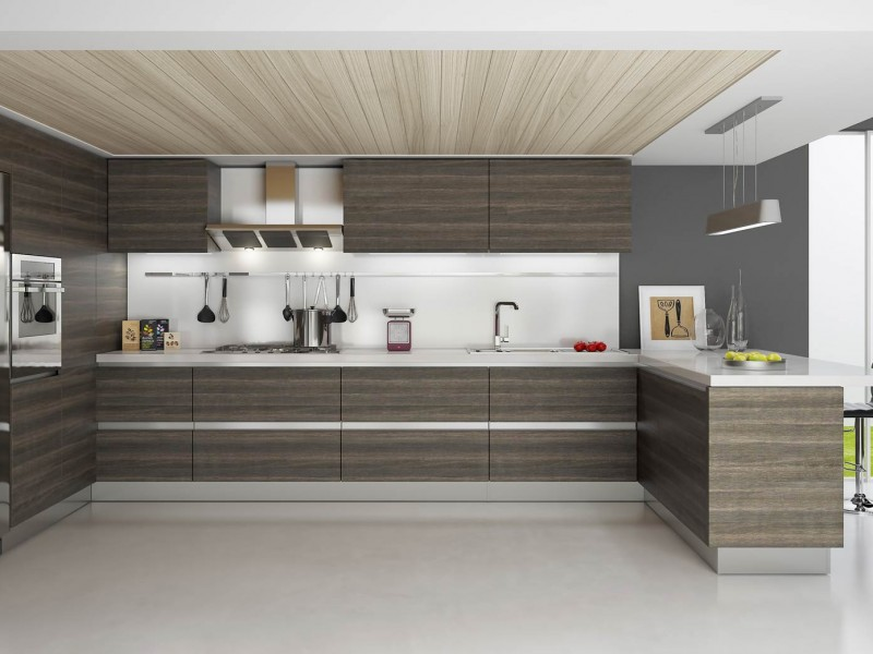 Fabulous Modern Kitchen Cabinets Canada Fancy Modern Kitchen Cabinets Modern Rta Kitchen Cabinets Usa And