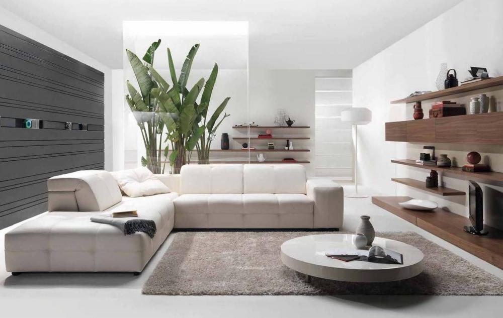 Nice Modern Living Room Accessories Modern Living Room Accessories Home Interior Design Living Room