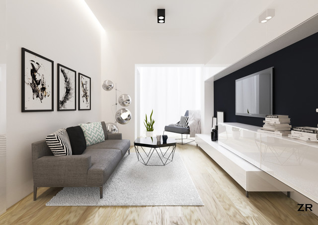 Nice Modern Small Living Room 25 Best Small Modern Living Room Ideas Remodeling Photos Houzz